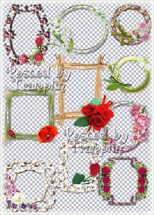 Красивые цветочные рамки - вырезы для оформления виньеток