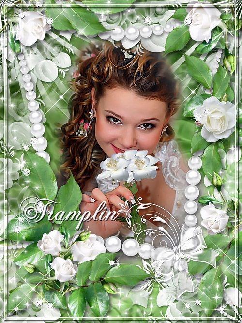 Рамка для фото с белыми розами – Словно слёзы невинные лепестки белоснежные