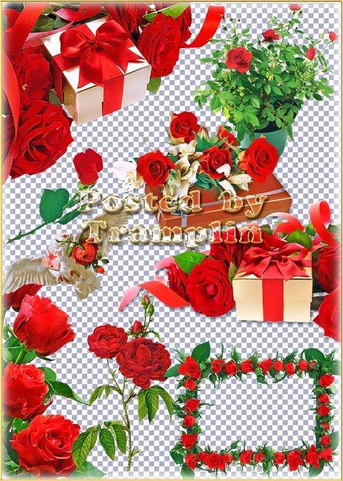 Клипартв Png – розы,  подарки и банты