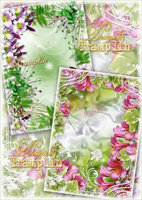 Две Цветочные рамки для фото – Лилии Прекрасные цветы
