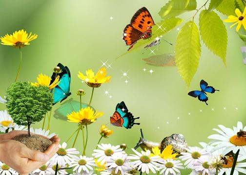 Картинки фоны природа детские для фотошопа
