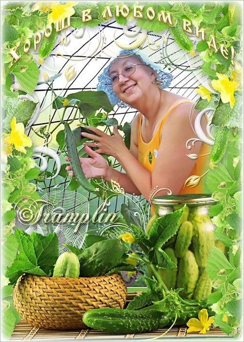 Летняя фоторамка – Я – зелёный огурец, Витаминный удалец
