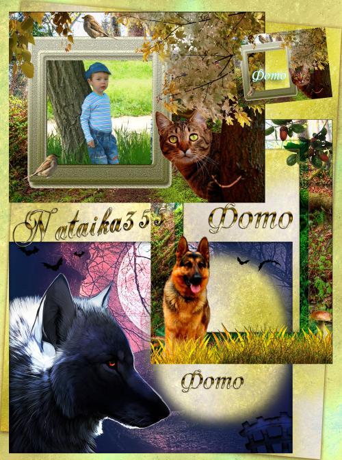 Рамки с животными - Хитрющий кот, овчарка и волчица