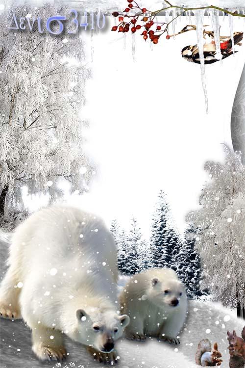 Рамка для фотографии - Новогодний лес