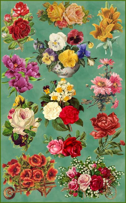 Клипарт - Винтажные цветы 2