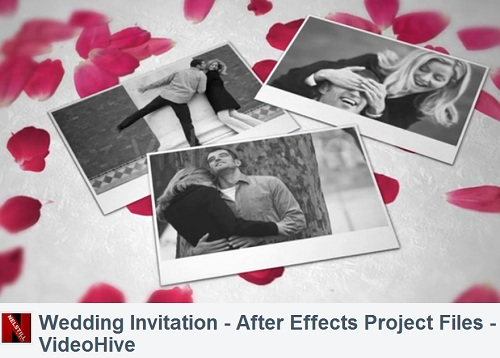 Videohive After Effects Project - Wedding Invitation