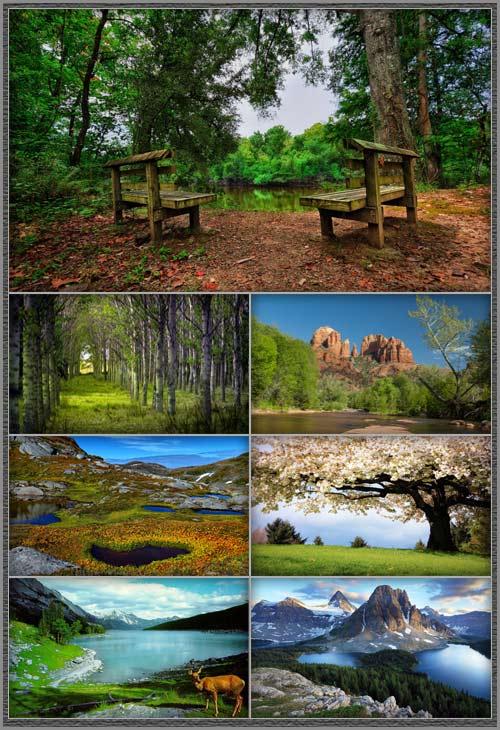 Обои - Красивые пейзажи