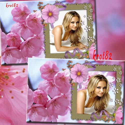 Красивая рамка для фота с цветами – Розовые лепестки цветов