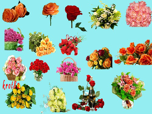 Клипарт на прозрачном фоне –  Розы