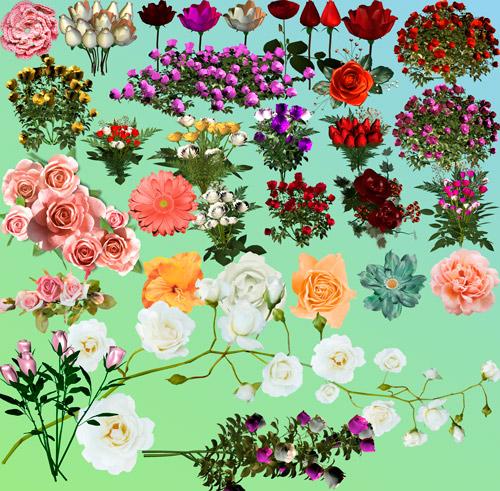 Скрап-набор - Цветы Для Всех