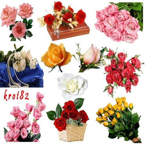 Клипарт цветы на прозрачном фоне –  Розы (2 часть)