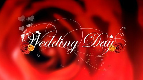 Istock  video footage - Wedding day