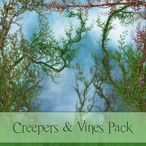 Клипарт - Виноградные лианы