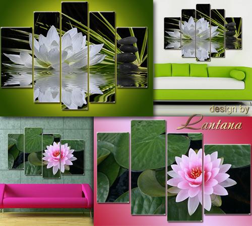 Полиптихи в PSD - Очарование водяной лилии