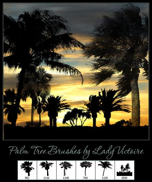 Кисти для фотошоп - Пальмы