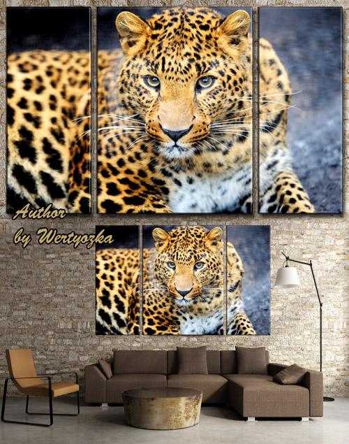 Леопард - Модульная картина триптих в psd формате