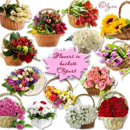 Корзинки с цветами – Клипарт PNG на прозрачном фоне