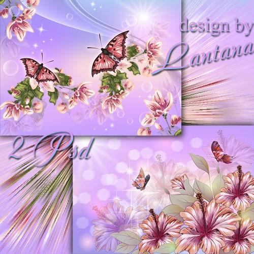 PSD исходники - Цветы и бабочки – беспечный мир цветной