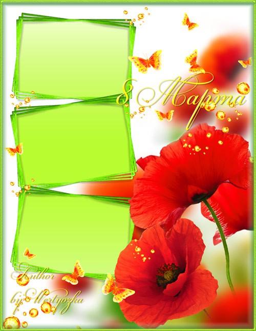 Рамка для фотошопа - Красные маки в поле зелёном радуют душу и сердце