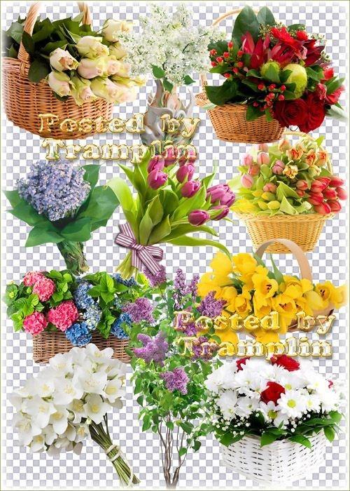 Букеты цветов – Клипарт на прозрачном фоне