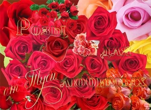 Клипарт – Розы для любимых