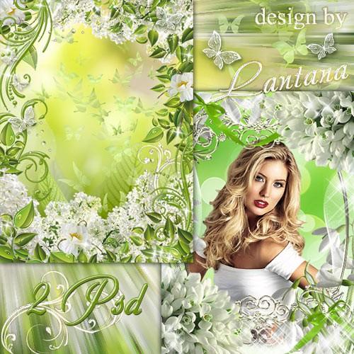 Рамочки - Белые весенние цветы на смену зимней стуже