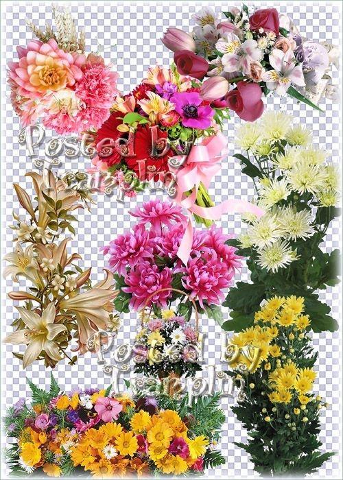 Клипарт на прозрачном фоне – Букеты цветов, композиции