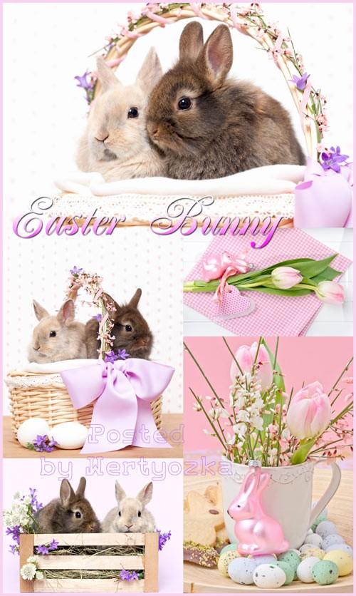 Пасхальные кролики в корзине - растровый клипарт