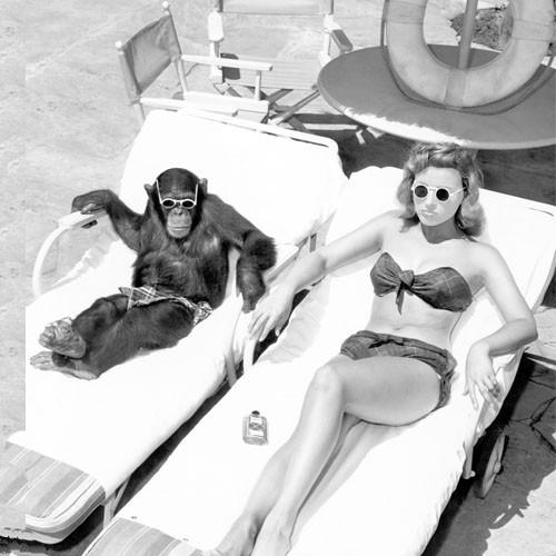 Шаблон женский - Загорает с обезьянкой