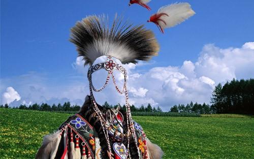 Шаблон для фотомонтажа - В наряде индейского вождя