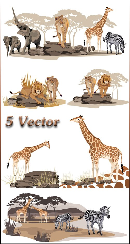 Жираф, слон, зебра, лев, животные - векторный клипарт