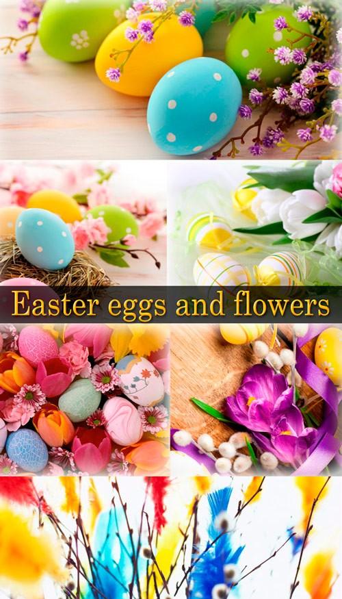 Фото сток - Пасхальные яйца и цветы
