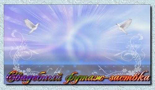 Свадебный футаж-заставка с голубями на голубом фоне