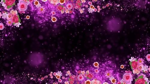 Футаж высокого разрешения - Парад цветов