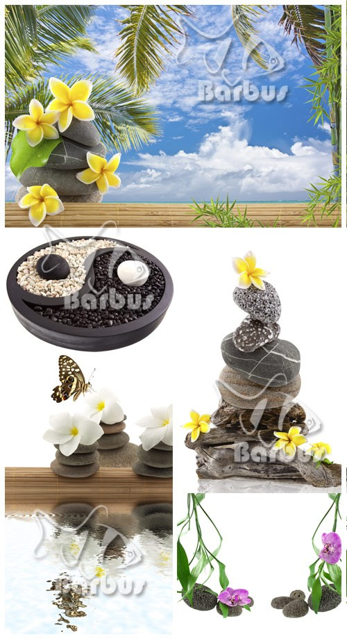 Stone pacification / Спокойствие камня