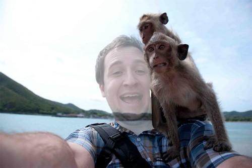 Шаблон для photoshop - Задорная фотка с обезьянками