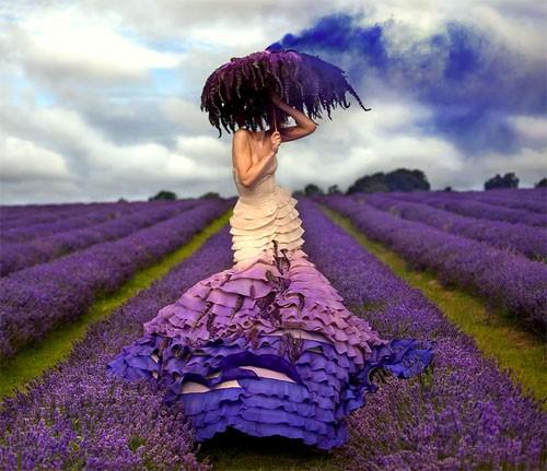 Шаблон для фотошопа - Женщина в красивом поле из лаванды