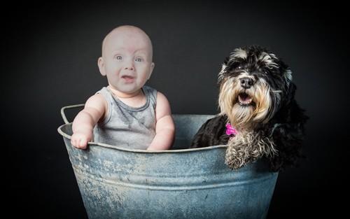 Детский шаблон - Ребёнок и собака купаются