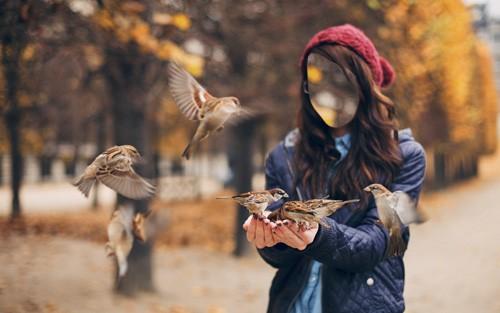 Женский шаблон - Девушка кормит воробушков