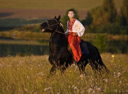 Мужской шаблон - В поле на жеребце
