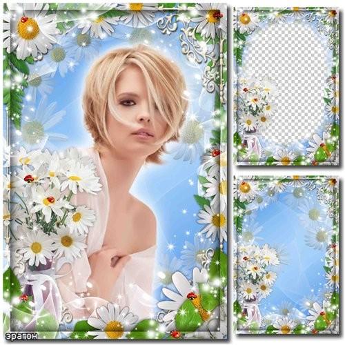 Цветочная рамка для фото – Белые ромашки