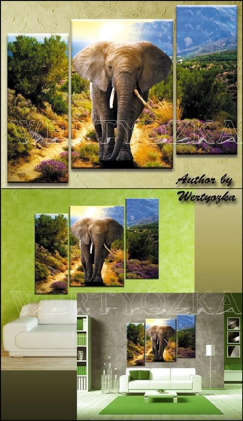 Слон на фоне природного пейзажа / Elephant - triptych in psd