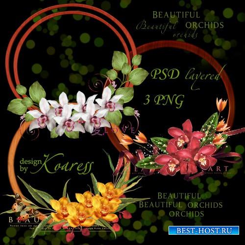 3 многослойные рамки выреза с тропическими орхидеями