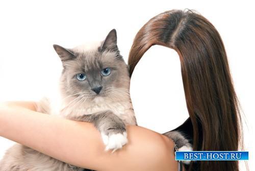 Женский шаблон - Голубоглазый кот