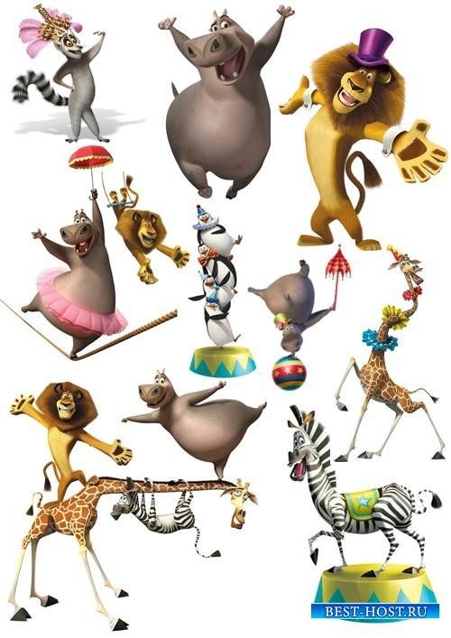 Подборка отрисованных персонажей мультфильма