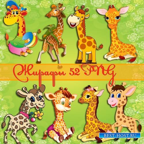 Клипарт - Жирафы