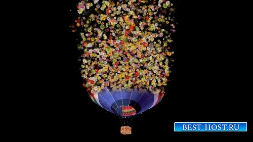 HD футаж Воздушный шар из цветов