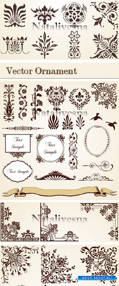 Элементы орнамента в Векторе/ Ornament Elements  in Vector