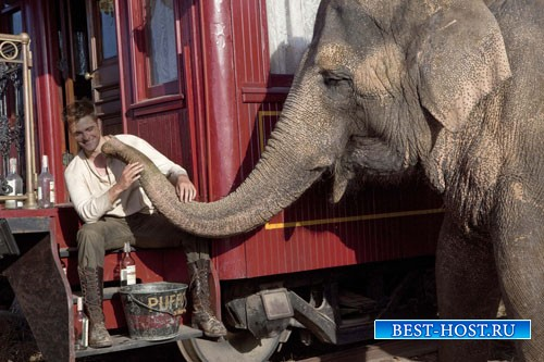 Мужской шаблон - Возле слона