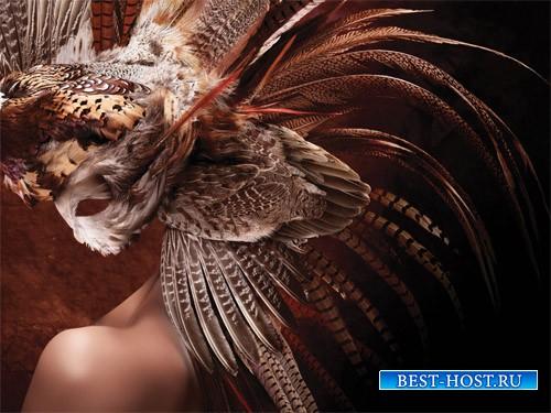 Маска из перьев - шаблон для девушек